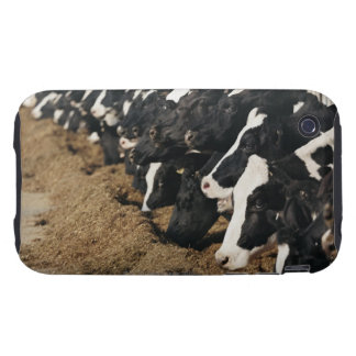 Diminishing Perspective of Cow's Heads Grazing Tough iPhone 3 Covers