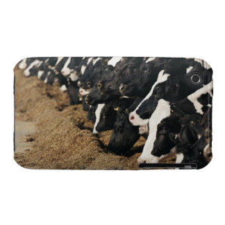 Diminishing Perspective of Cow's Heads Grazing iPhone 3 Case-Mate Case