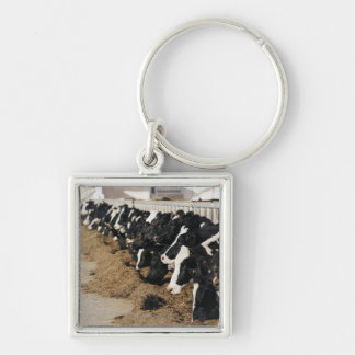 Diminishing Perspective of Cow's Heads Grazing Keychain
