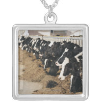 Diminishing Perspective of Cow's Heads Grazing Silver Plated Necklace