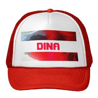 Dina Gorro De Camionero
