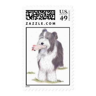 """Dinah"" - Bearded Collie Postage Stamp"