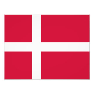 Dinamarca - bandera danesa cojinete