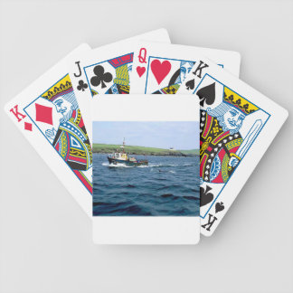 Dingle Fungi dolphin Bicycle Playing Cards