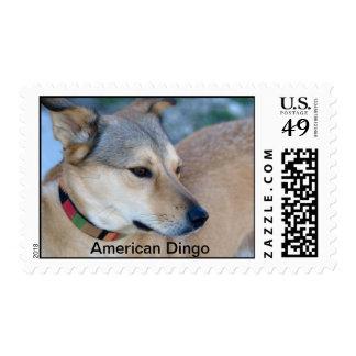 Dingo americano sello