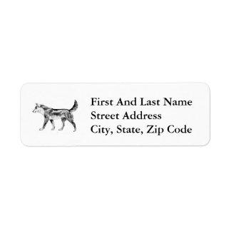 Dingo australiano etiquetas de remite