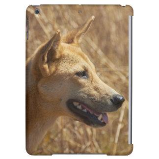 Dingo (Canis lupus dingo) iPad Air Covers
