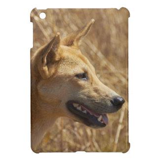 Dingo (Canis lupus dingo) iPad Mini Cover