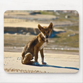 Dingo Puppy -Fraser Island Mouse Pad