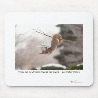 Dining Squirrel Photograph Gifts & Collectibles Mouse Pad
