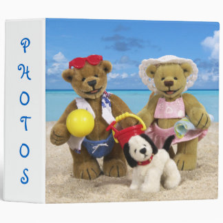 Dinky Bears Day at the Beach Binder