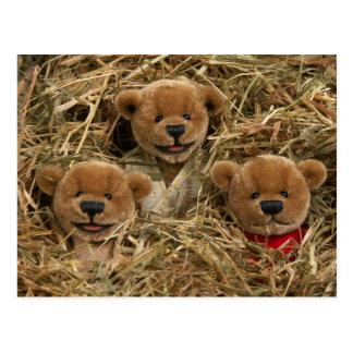 Dinky Bears: Farmer Kids Postcard