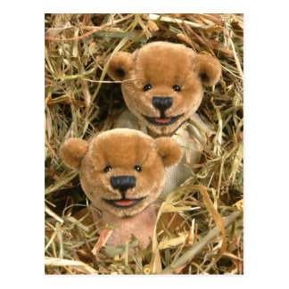 Dinky Bears Farmer Kids Postcard