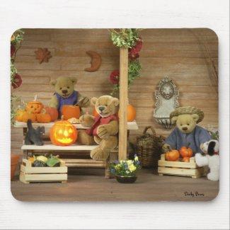 Dinky Bears Herbst