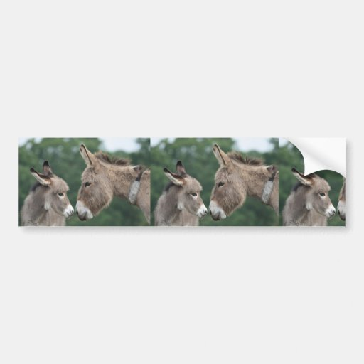 Dinky donkey bumper stickers