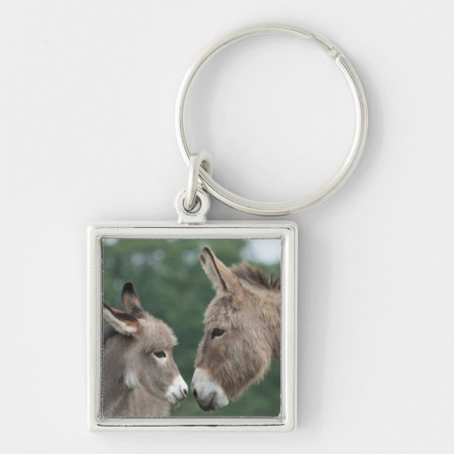 Dinky donkey Silver-Colored square keychain