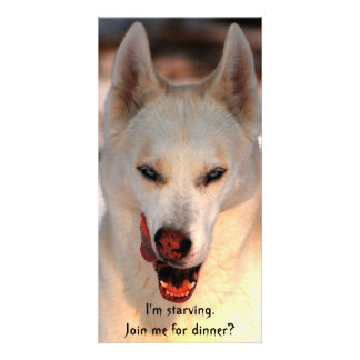 Dinner invitation (humorous) custom photo card