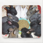 Dinner Time! Mouse Pads