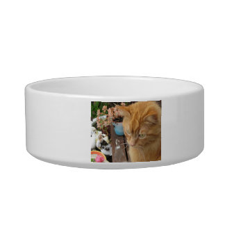Dinner Time with Harvey Cat Water Bowl