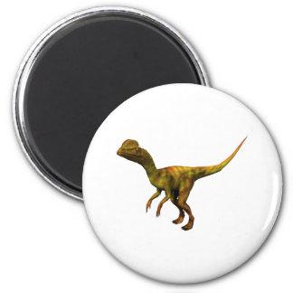Dino Dinsaurier Saurier dinosaur Dilophosaurus Imán Redondo 5 Cm