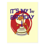 Dino First Birthday Tshirts and Gifts Postcards