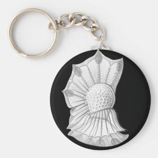 Dinoflagellate Keychain