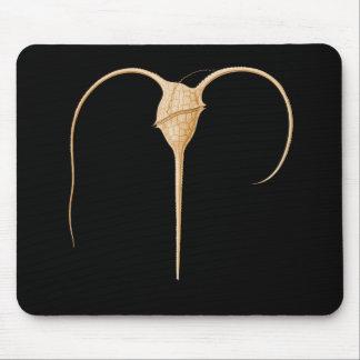 Dinoflagellate Mouse Pad