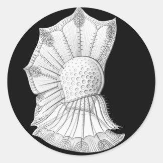 Dinoflagellate Stickers