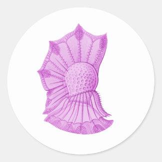 Dinoflagellate Round Stickers