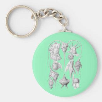Dinoflagellates Basic Round Button Keychain