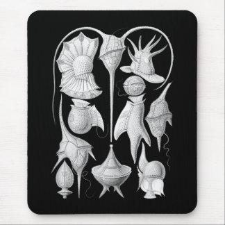 Dinoflagellates Mouse Pad