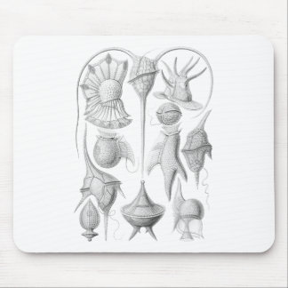 Dinoflagellates Mouse Pad