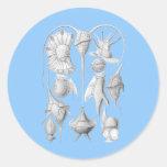 Dinoflagellates Round Sticker