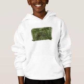 Dinosaur 3736 hoodie