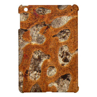 Dinosaur bone under the microscope cover for the iPad mini
