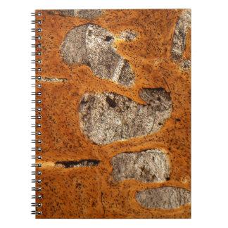Dinosaur bone under the microscope notebook