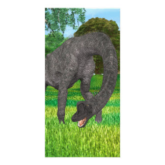 Dinosaur Brachiosaurus Card