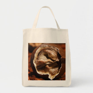 Dinosaur egg with embryo grocery tote bag