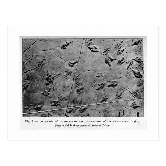 Dinosaur footprints art postcard