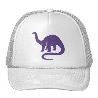 Dinosaur  Hat - Purple