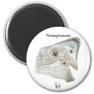 Dinosaur Magnet Nemegtomaia Profile Gregory Paul