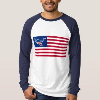 Dinosaur Party USA Flag Parody T-Shirt