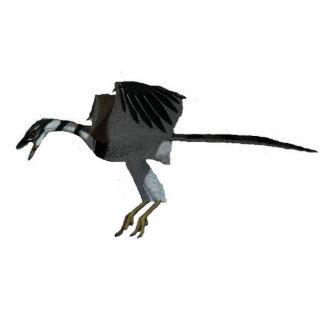 Dinosaur Photo Sculpture Archaeopteryx Greg Paul