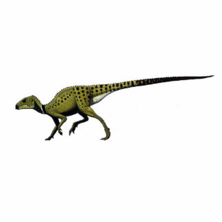 Dinosaur Photo Sculpture Heterodontosaurus