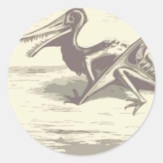 Dinosaur: Rhamphorhynchus Stickers