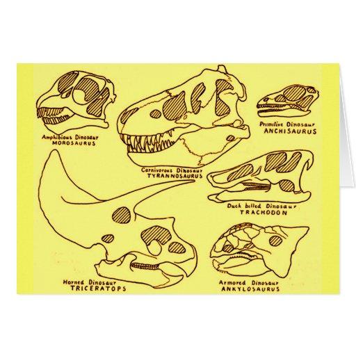 Dinosaur Skulls Cards