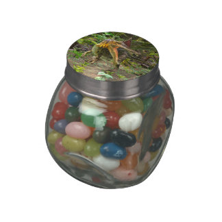 Dinosaur Spinosaurus Jelly Belly Candy Jar