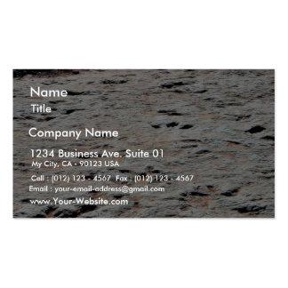 Dinosaur Tracks Business Card Templates