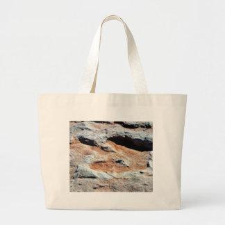 Dinosaur Tracks North Of Flagstaff Canvas Bags