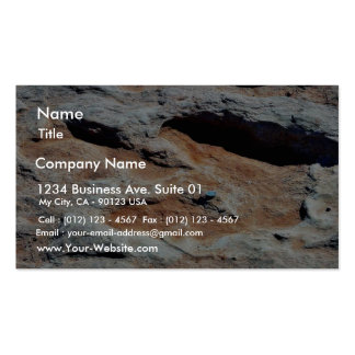 Dinosaur Tracks North Of Flagstaff Business Card Templates